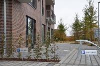 Terrassen und Flächen vor den beiden Läden